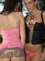 Kate and Karen love to tease and play in the backyard
